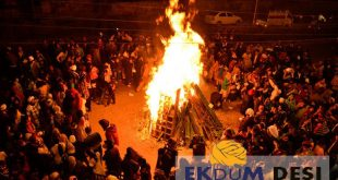 How Lohri is celebrated in Punjab?