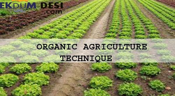 Organic Agriculture Technique